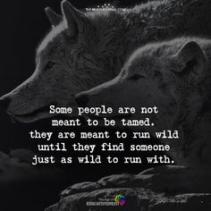My brother and I and his wolf.but he was to wild for me.he was to wild for everyone. Dark Quotes, Strong Quotes, Wisdom Quotes, True Quotes, Motivational Quotes, Inspirational Quotes, Lone Wolf Quotes, Les Chakras, Wolf Love