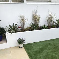 How To Plan, Garden, Plants, Garten, Flora, Plant, Lawn And Garden, Outdoor, Tuin