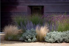 Front Yard Landscaping 30 Fabulous Xeriscape Front Yard Design Ideas and Pictures - Awesome Indoor Farmhouse Landscaping, Modern Landscaping, Front Yard Landscaping, Landscaping Ideas, Backyard Ideas, Landscaping Plants, Outdoor Landscaping, Backyard Patio, Patio Ideas