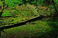 Desvio agua para el molino. Rio Cabra. La Borbolla, Concejo de Llanes. Principado de Asturias. Spain. [By Valentin Enrique].