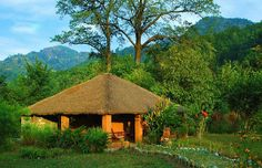 #12. Enjoy the mystic Riverine Woods  Best time to visit: November to June Accommodation:  Mud cottages Attractions: Elephant rides to Corbett Park