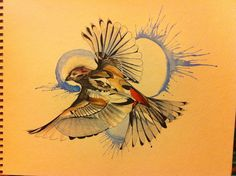 Finch in watercolor and micron. One of a lifelong obsession at acornkid.tumblr.com.