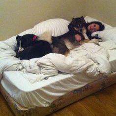 Lazy day in Ohio @jessicaschmelzer
