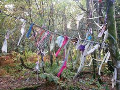 """""""Aberfoyle is commonly regarded as one of the most fairy-active places in Scotland."""" A site describing some of the fairy legends and areas of Scotland."""