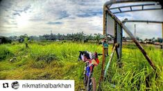 #Repost @nikmatinalbarkhan  Relaxed Calm and Bike #kamerahpgw #JustBikeIt  #Mataponsel #ayogowes #Nusantarariders #Naiksepeda #Mtbindonesia #gowesholic #Pacificbikerider #pacificbikes #pacificbikerider #sepeda #sepedagunung #bersepeda #gowes #hardtail #mountainbike #mtbindonesia #crosscountry
