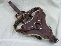 Leather Dog Harness Police K9 Schutzhund High Quality Chrome over Brass Buckles. $145.00, via Etsy.