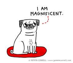 pug-esteem. Wish I had it!