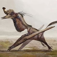 Quetzalcoatlus, perhaps the largest flying animal of all time, was a pterosaur…