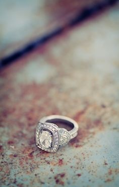 Such a lovely oval halo setting, photo by Clayton Austin, engagement ring Wedding Engagement, Wedding Bands, Engagement Rings, Wedding Ring, Wedding Jewelry, Jewelry Box, Jewellery, Jewelry Ideas, Diy Jewelry