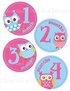 Monthly onesie stickers - Girls hot pink and turquoise owls- perfect baby shower gift. $8.50, via Etsy.