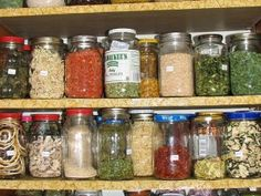 Dehydrating Intro 101 » The Homestead Survival