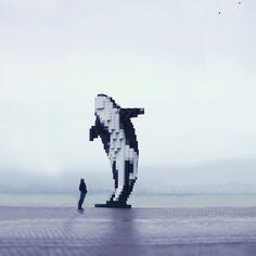 digital-orca-by-douglas-coupland-joel-robison_549140_default_base_img.png 960×960 píxeles
