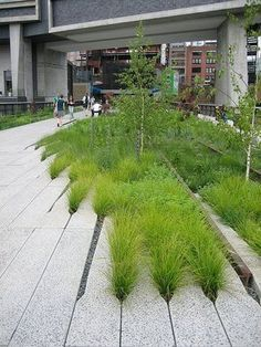 Urban Garden Design (I like the way plants are grown) strategic design: PUBLIC SPACE, elevated to new heights Landscape And Urbanism, Landscape Architecture Design, Urban Landscape, Architecture Portfolio, Landscape Model, Architecture Diagrams, House Landscape, Landscape Photos, Landscape Photography