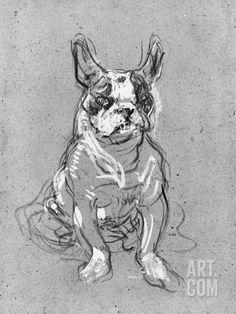 Bouboule', the Bulldog of Madame Palmyre at La Souris, 1897 Photographic Print by Henri de Toulouse-Lautrec at Art.com