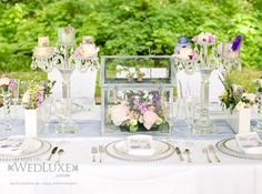 For a fresh romantic spring feeling, add a botanical twist with a mini green house for your centrepiece! With decor and linen by Art of the Party, as seen on www.wedluxe.com/naturalbeauty