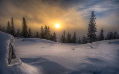 General 1920x1200 landscape nature winter snow forest frost Sun mist pine trees clouds Norway cold sky