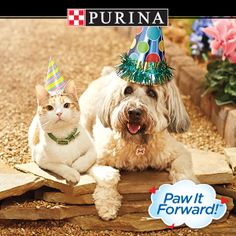 May is National Pet Month! Share and show your love of pets with Purina(R)--you could WIN instantly! No purchase necessary. See official rules.