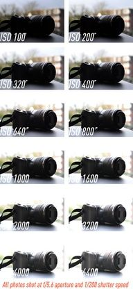 Amazing camera guide- buying a camera, aperture, iso, shutter, etc.  Great picture examples!