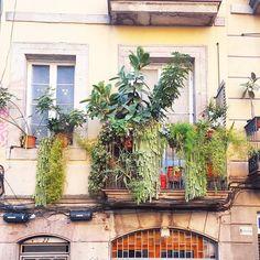 courtyard - the Tuscan patio of the Albiousse guest house, Uzes, France Courtyard Design, Patio Design, Garden Design, Courtyard Ideas, Outdoor Rooms, Outdoor Gardens, Outdoor Living, Outdoor Decor, Italian Patio