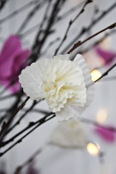 lit twigs with egg crate and muffin liner flowers Handmade Flowers, Diy Flowers, Pretty Flowers, Paper Flowers, Hobbies And Crafts, Crafts To Make, Crafts For Kids, Arts And Crafts, Cupcake Paper Crafts