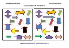 diferencias entre conjuntos formas tamaño y colores IMEGENES_19