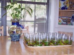 Jello Aquariums from Food.com:   What a simple fun way to use blue jello and gummy fish!
