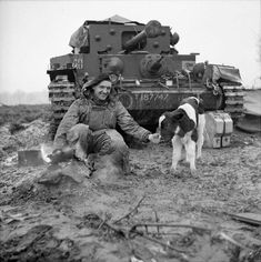 A Cromwell tank crewman of Armoured Division prepares a brew alongside an adopted German calf 8 March Canadian Army, British Army, British Tanks, Cromwell Tank, Heavy Cruiser, Military Armor, Armored Fighting Vehicle, Military Pictures, World Of Tanks