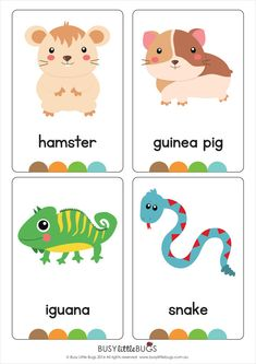 My Pets Flash Cards AUTOMATIC DOWNLOAD by BusyLittleBugsShop