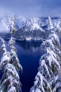 Winter in Crater Lake, Oregon Love the white snow against the contrast of the blue water! Lovely pic!