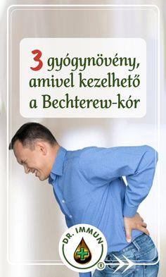 A Bechterew-kór olyan ízületi gyulladást jelent, ami a gerincoszlopot támadja és komoly gerinc merevséggel, erős hátfájással jár. A Bechterew-kór során a csigolyák közötti porckorongok, szalagok, ízületek csontosodnak és a csigolyák összenőnek, ami idővel a hát púposságához vezet. A Bechterew-kór élethosszig tartó kezelést igényel, nem gyógyítható, viszont gyógynövényekkel segíthetünk a fájdalom enyhítésében. Home Decor, Decoration Home, Room Decor, Home Interior Design, Home Decoration, Interior Design