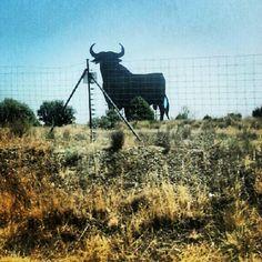Ay vaya torito, ay torito guapo!!! #roadtrip #sierramadrid #toroosborne #toro #spain  ©Raquel Conde/Infinita/Infiniteando