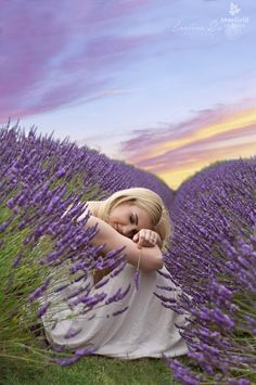 Photo Competition 2015 | Mayfield Lavender