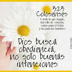 Dios #obediencia #colosenses