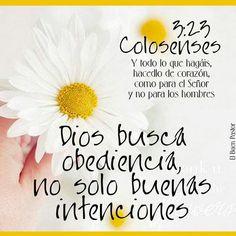 Dios #obediencia #colosenses