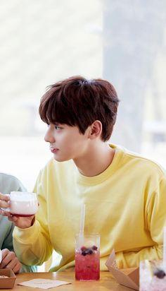 Wanna One x Innisfree: Wanna One Go in Jeju Hwang Minhyun Wallpaper
