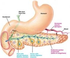 living with pancreatitis.
