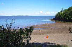Described are 7 things to do in Fundy National Park, near Alma, New Brunswick. The park is home to the world's highest tides. Vacation Places, Places To Travel, Places To Go, Vacations, East Coast Canada, New Brunswick Canada, East Coast Road Trip, Beautiful Places To Live, Atlantic Canada
