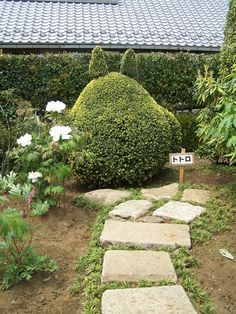 So cute! When I have my own garden, I am aiming to have this!!  #tororo #plantsculpting #garden