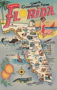 "fancydancynancy: ""fuckyeahvintage-retro: ""Florida Postcard, (via) "" ❤ Vintage Wonderland ❤ "" Florida State Map, Old Florida, Vintage Florida, Florida Usa, Florida Travel, Florida Maps, Visit Florida, Sarasota Florida, Florida Vacation"