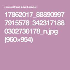 17862017_888909977915578_3423171880302730178_n.jpg (960×954)
