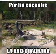 Funny Spanish Memes, Spanish Humor, Funny Quotes, Funny Memes, Hilarious, Avakin Life, Northwestern University, Little Bit, Animal Jokes