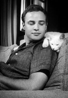 Marlon Brando with side glance to affectionate white cat.  RESIST PINTEREST CENSORSHIP [please attach message to all pins]