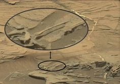 UFO Sightings Hotspot: Amazing 'Floating Spoon' Spotted By Curiosity Mars...