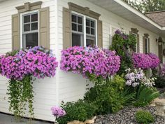 Landscape Front Yard Curb Appeal Window Boxes 16 Trendy Ideas - All For Garden