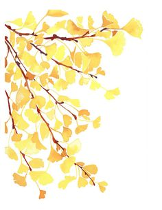 Handmade Watercolor Autumn Fall Yellow Ginkgo Leaves- 8x10 Wall Art Watercolor Print. $15.00, via Etsy.