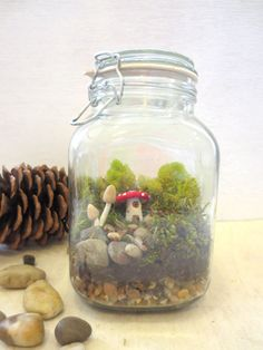 A Faerie Gathering...Fairy Garden Terrarium Mushroom Accessories Fairy Garden Mushroom Faerie Miniature Mushroom House. $56.00, via Etsy.