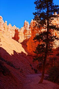 bryce national park - bryce national park Bryce National Park, National Parks, Monument Valley, Grand Canyon, Nature, Travel, Naturaleza, Viajes, Destinations