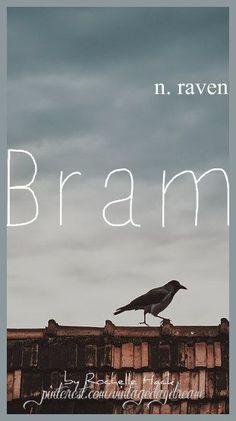 Baby Boy Name: Bram. Meaning: Raven; Thicket. Origin: Scottish; Irish; Gaelic. https://www.pinterest.com/vintagedaydream/baby-names/
