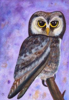 Owl Original Painting Watercolor Ink Bird Art by CelineArtGalerie