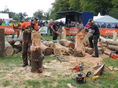 Wedstrijden en evenementen - Natuurlijk spelen en monumentale beelden van hout